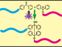 22- Synthesis of Block Copolymers by Selective H-Abstraction and Radical Coupling Reactions Using Benzophenone/Benzhydrol Photoinitiating System