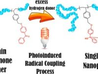 26- Preparation of Single Chain Nanoparticles via Photoinduced Radical Coupling Process
